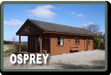 cabin – osprey