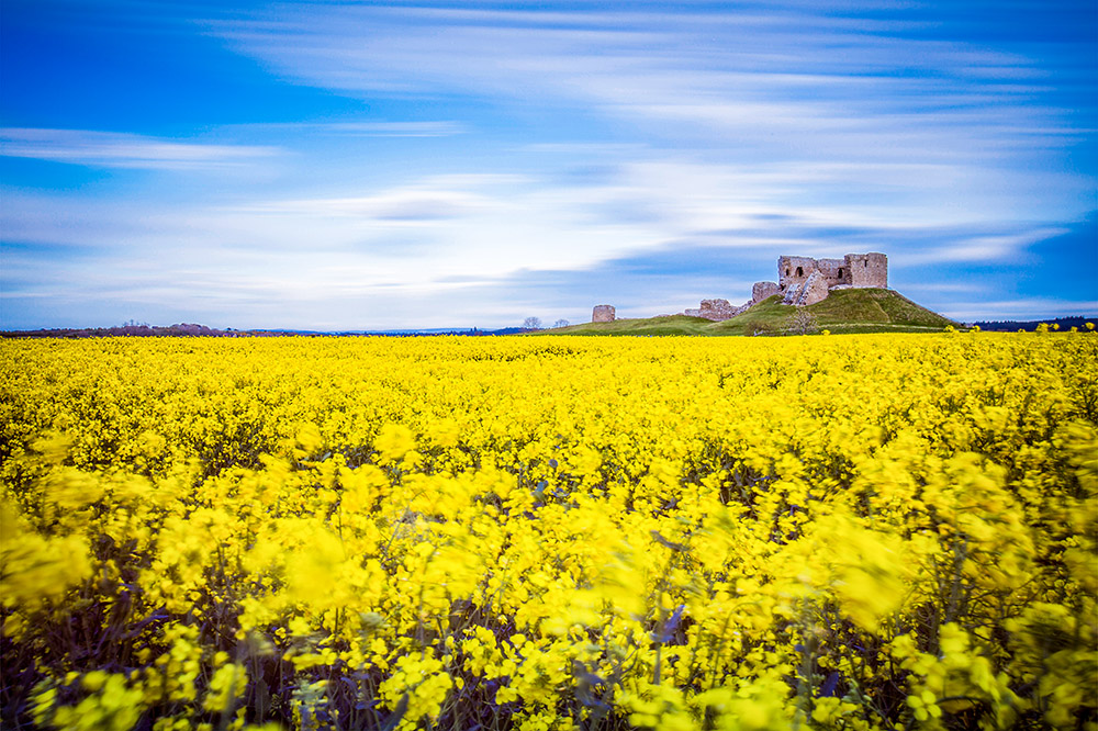 Duffus Castle in Spring